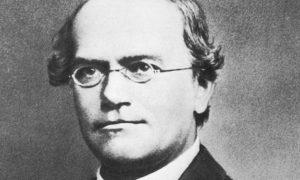 Gregor Johan Mendel Biography